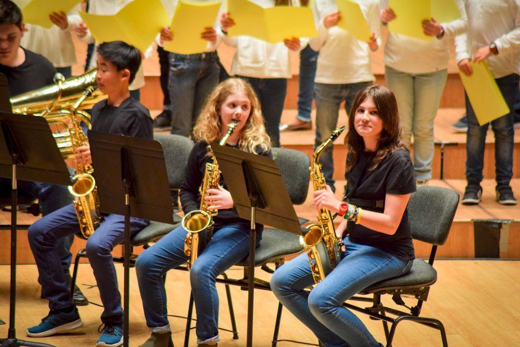 ibi concert ecosol palau musica_028