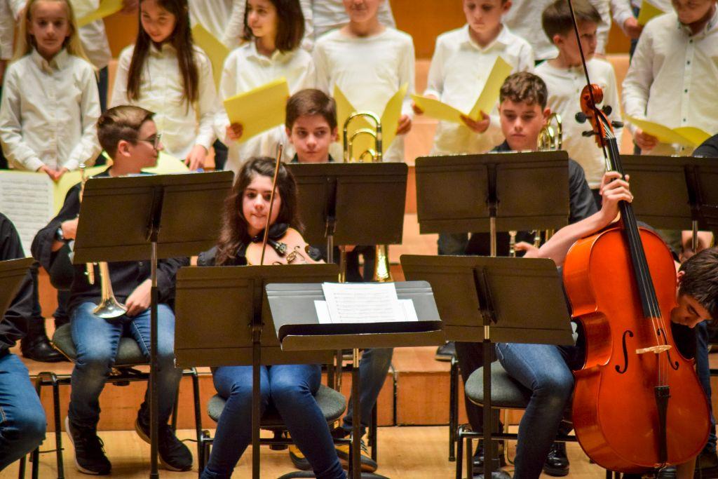 ibi concert ecosol palau musica_029