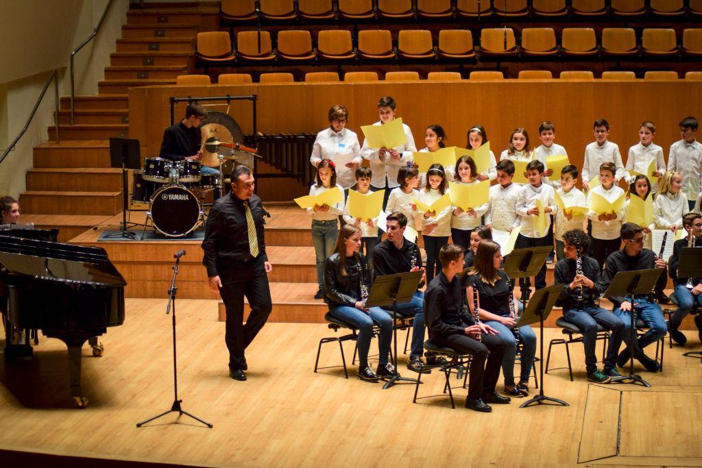 ibi concert ecosol palau musica_035