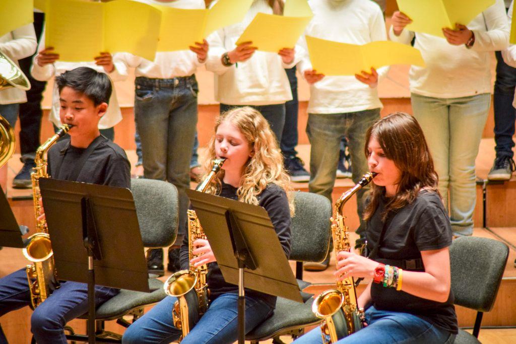 ibi concert ecosol palau musica_057