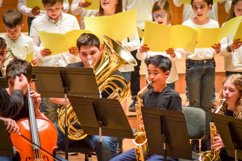 ibi concert ecosol palau musica_058