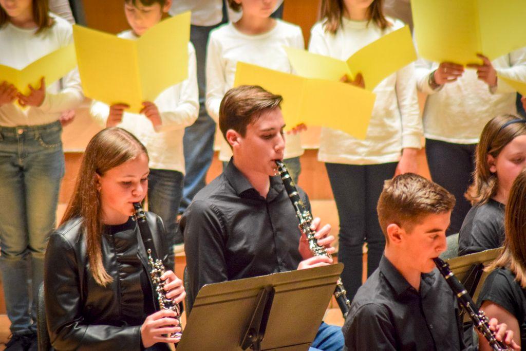 ibi concert ecosol palau musica_064