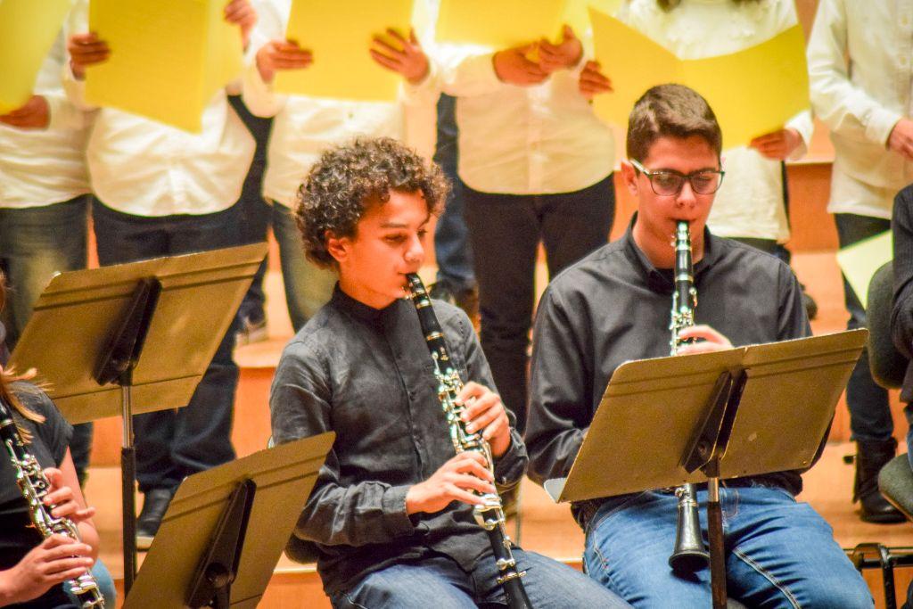 ibi concert ecosol palau musica_066