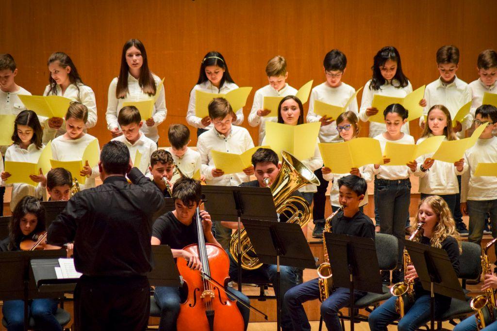 ibi concert ecosol palau musica_070
