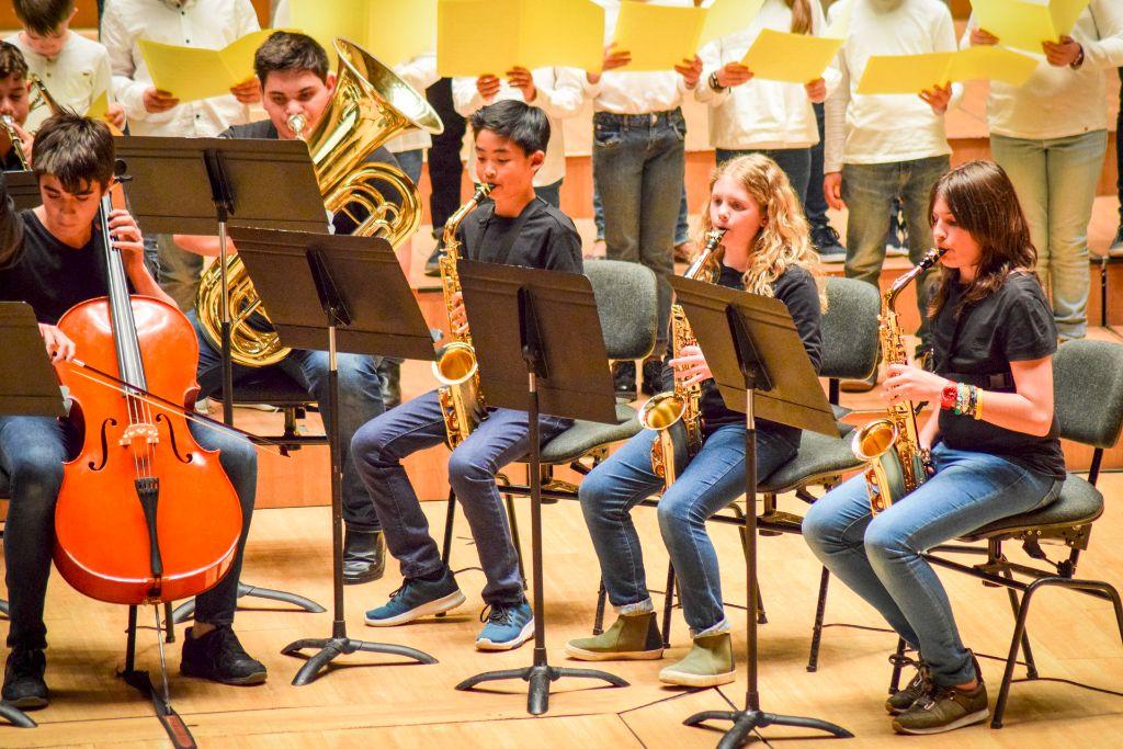 ibi concert ecosol palau musica_071
