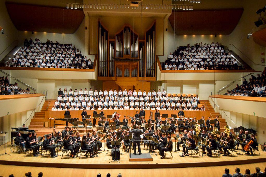 ibi concert ecosol palau musica_106
