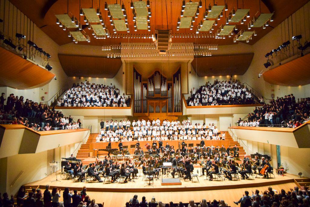 ibi concert ecosol palau musica_113