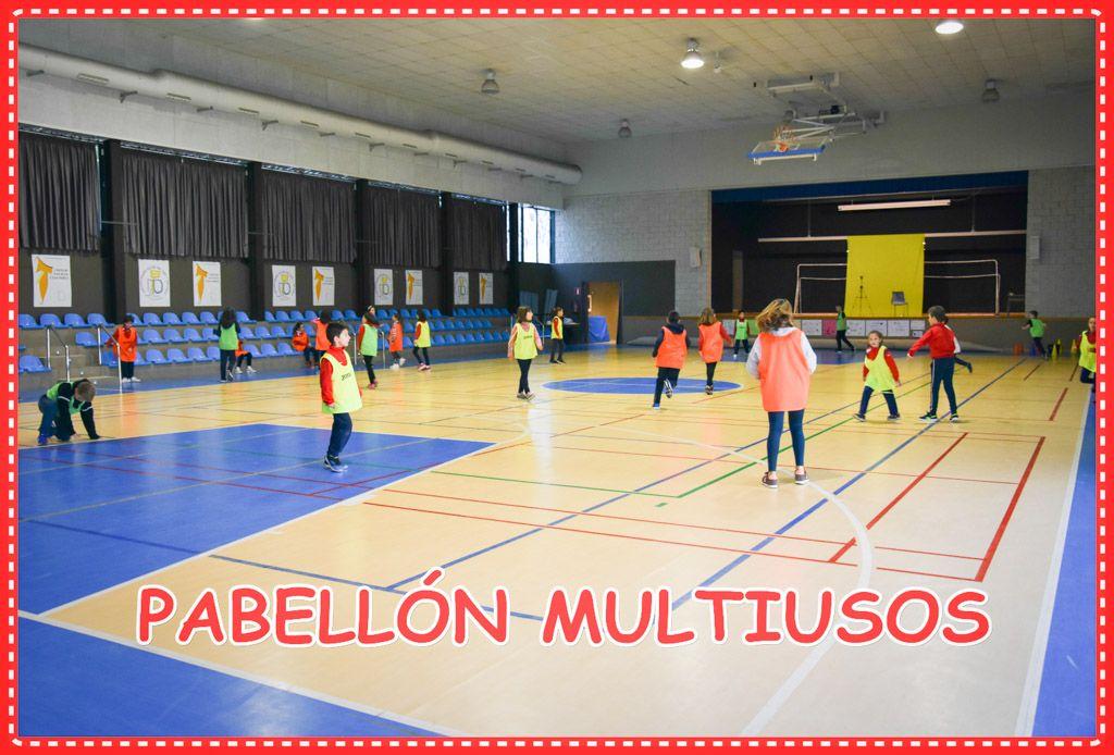 PABELLÓN MULTIUSOS (1)